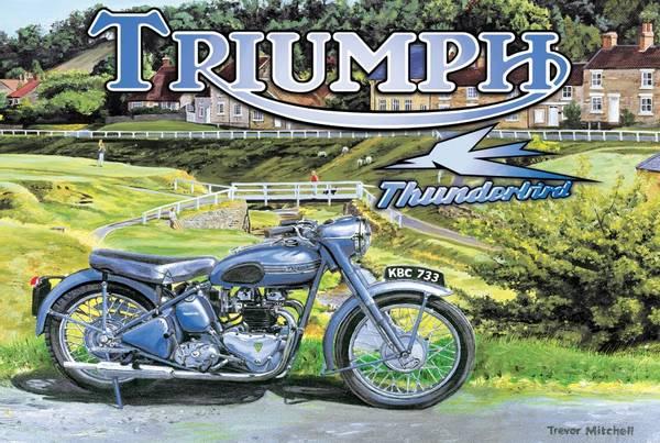 Bilde av Triumph Thunderbird
