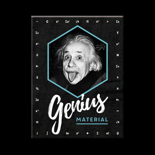 Bilde av Einstein Genius